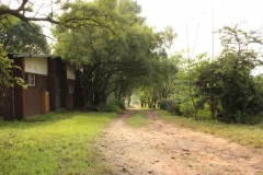 The entrance road leading to the Cub den
